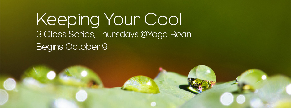 General Program Class @ Yoga Bean | Lubbock | Texas | United States
